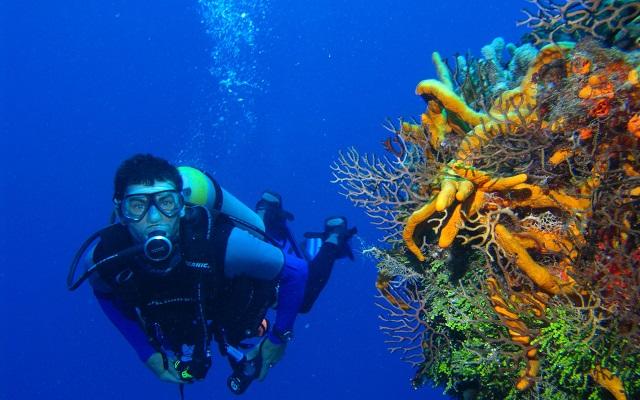 Comment plongée sous marine